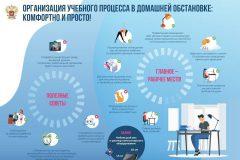 Организация учебного процесса в домашней обстановке